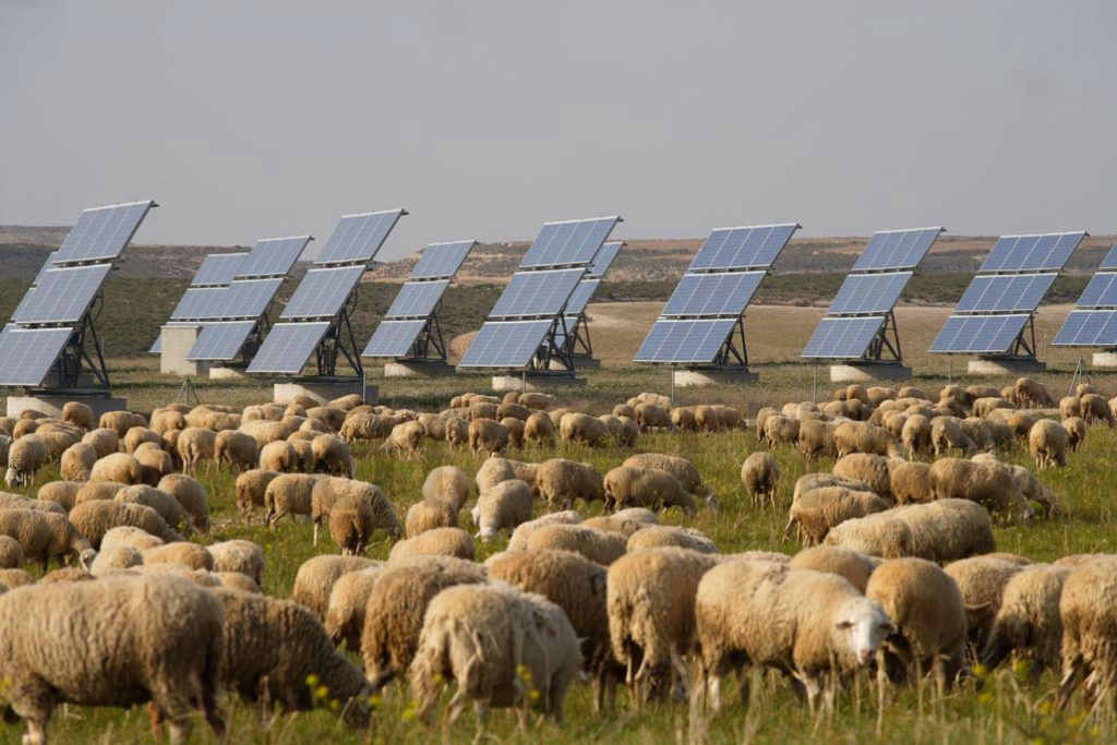 huerta solar de energia alternativa - fotografos industriales